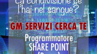 programmatore sharepoint