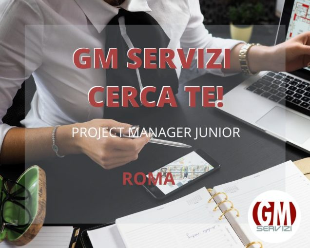 Project Manager Junior