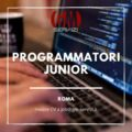 programmatori junior roma