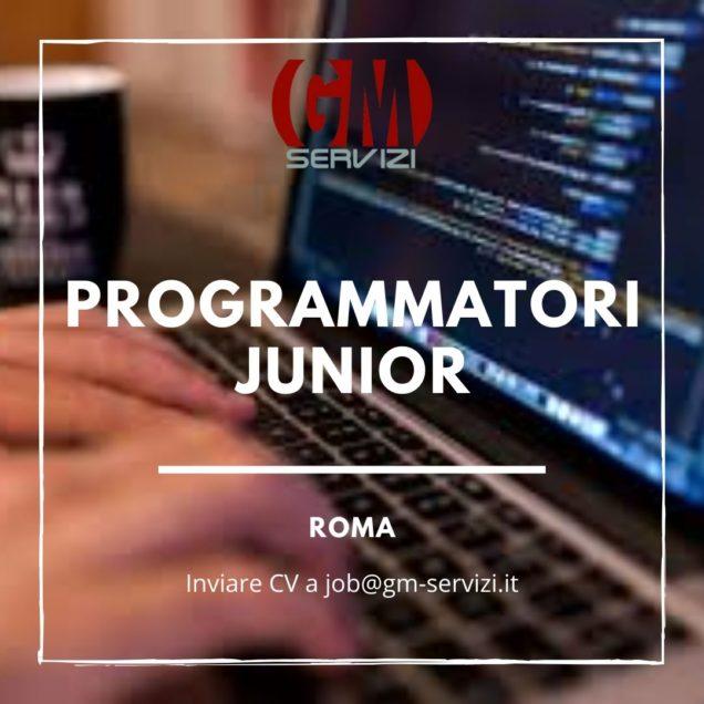 programmatori junior roma