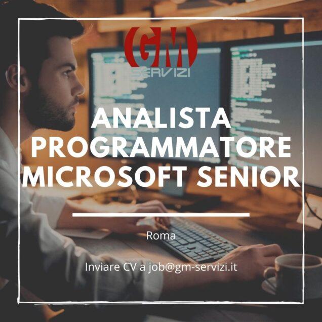 analista programmatore microsoft senior