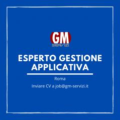 GM Servizi   posizione aperta esperto gestione applicativa